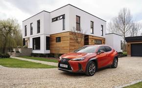 Picture auto, orange, Lexus, mansion, 250h