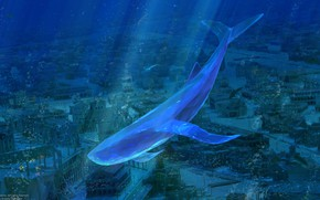 Picture fish, the city, kit, under water, by ArseniXC, затоплен