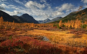 Picture autumn, forest, the sky, clouds, light, mountains, blue, hills