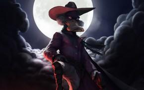 Picture Night, The moon, Hat, Moon, Duck, Art, Art, Night, Cartoon, Hat, Character, Darkwing Duck, Black …