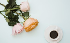 Picture flowers, roses, bouquet, pink, flowers, coffee cup, roses, a Cup of coffee