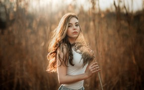 Picture field, grass, look, the sun, model, portrait, jeans, makeup, Mike, figure, hairstyle, nature, posing, bokeh, …