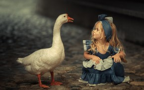 Picture mood, bird, meeting, girl, goose, familiarity