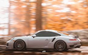 Picture speed, 911, Porsche, Microsoft, Forza Horizon 4, by Wallpy