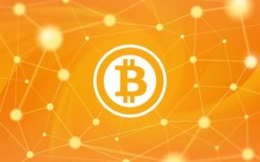 Picture background, orange, fon, bitcoin, bitcoin, btc