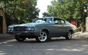 Picture Chevrolet, Classic, Chevelle, Vehicle, Chevelle SS