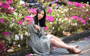 Picture look, dress, legs, Asian