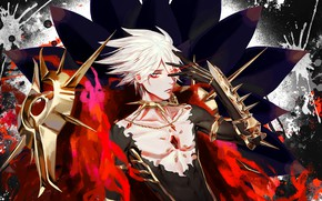 Picture look, guy, Fate - Apocrypha, Red Lancer, Fate Apocrypha