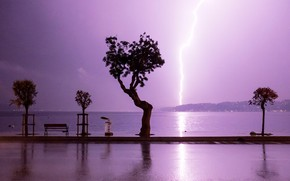 Picture trees, lightning, Tree, bench, pond