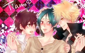 Picture anime, art, guys, trio, Katekyo Hitman Reborn, Rakudo Mukuro, Teacher mafia Reborn, The clams, Sawada …