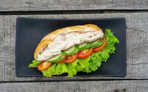 Picture bread, sandwich, vegetables, salad