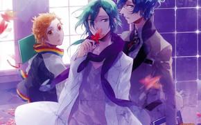 Picture guys, Starry Sky, Starry★Sky, visual novel, anime (2011)