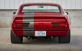 Picture Chevrolet, Camaro, Vehicle