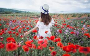 Picture field, summer, girl, pose, hair, back, Maki, hat, Xenia, Sergey Shatskov