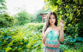 Picture girl, branches, hands, Asian, cutie