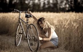 Picture road, summer, girl, bike
