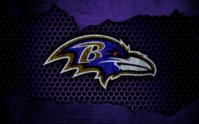 Picture wallpaper, sport, logo, NFL, american football, Baltimore Ravens