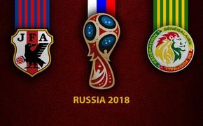 Picture wallpaper, sport, logo, football, FIFA World Cup, Russia 2018, Japan vs Senegal