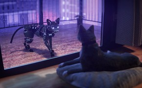 Picture Cat, Future, Robot, Cat, Window, Fantasy, Art, Art, Robot, Fiction, Cat, Future, Illustration, Animal, Characters, …