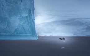 Picture boat, iceberg, boat, Antarctica, iceberg, Antarctica, John-Mei Zhong
