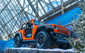 Picture car, cars, jeep, orange, track, toronto, 2019, Autoshow