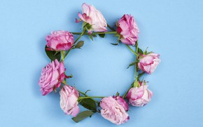 Picture flowers, roses, pink, wreath, wood, pink, flowers, beautiful, roses, wreath