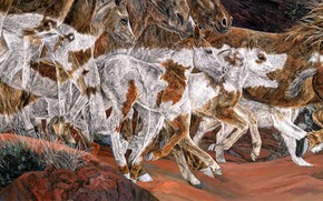 Picture stones, figure, graphics, horses, picture, styling, horse, art, running, spot, color, painting, a lot, muzzle, …