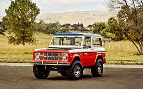 Picture Ford, Classic, Off Road, Bronco