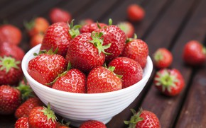 Picture berries, strawberry, bowl, placer