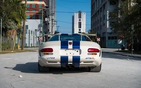 Picture Dodge Viper, Sports car, Back, Spoiler, American car, GTSR