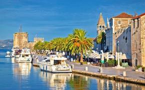 Picture the city, palm trees, yachts, promenade, Croatia, Jadran, UNESCO, Trogir
