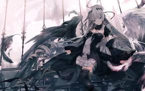 Picture girl, wings, angel, black wings