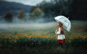 Picture field, umbrella, girl
