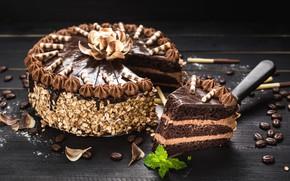 Picture cake, nuts, cream, coffee beans, chocolate, sweet, glaze, dessert