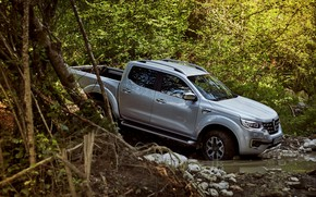Picture forest, water, branches, stones, Renault, pickup, 4x4, 2017, Alaskan, gray-silver