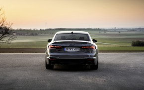 Picture Audi, coupe, rear view, RS 5, 2020, RS5 Coupe