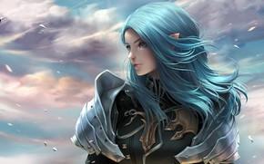 Picture girl, armor, elf