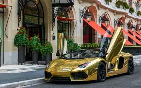 Picture Roadster, Lamborghini, Aventador, Lamborghini Aventador Roadster