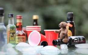 Picture childhood, table, background, toy, ice, small, bear, bear, glasses, bear, bottle, still life, plush, items, …