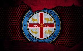 Picture wallpaper, sport, logo, football, Melbourne City
