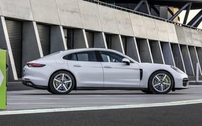 Picture Porsche, Panamera, in profile, 2021, Panamera 4S E-Hybrid
