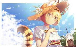 Picture girl, serval, kemono friends, animal ears (artist)
