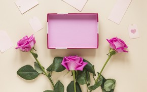 Picture box, gift, roses, bouquet
