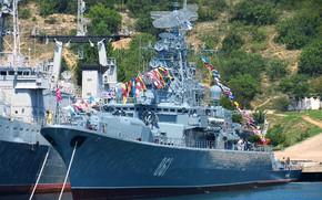 Picture ship, Sevastopol, guard, 1135 project, fine