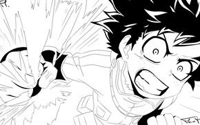 Picture coloring, My Hero Academia, Boku No Hero Academy, Midori Isuku, My Hero Academy
