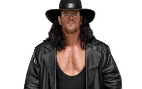 Picture look, hat, cloak, wrestler, Wrestling, WWE, The undertaker, The Undertaker, Mark William Calway
