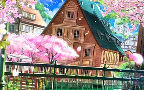 Picture wire, the fence, blue sky, wooden house, flowering in the spring, spring breeze