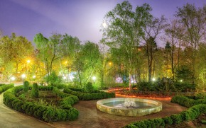 Picture trees, design, lights, Park, the evening, lights, fountain, Russia, the bushes, Sakhalin
