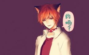 Picture background, anime, art, guy, The gekka Shoujo Nozaki-kun, Mikoshiba Miko Online, The author of the …