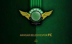 Picture wallpaper, sport, logo, football, Turkish Superlig, Akhisar Belediyespor